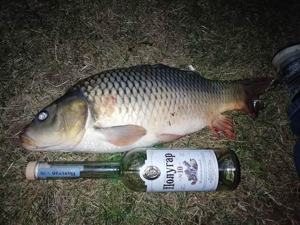 Очень Деловая рыбалка на озере Понти фото 5