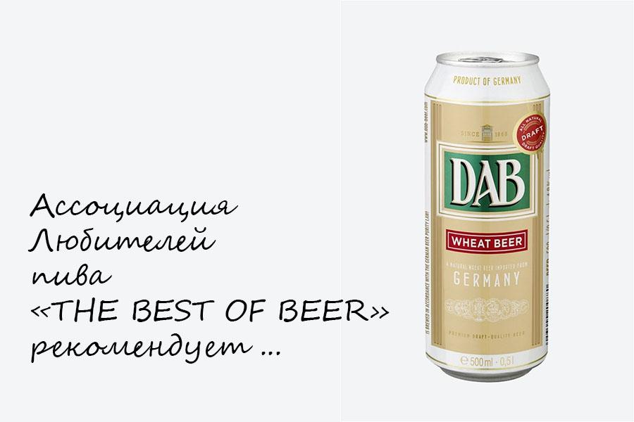THE BEST OF BEER  рекомендует пиво DAB WHEAT BEER (HEFEWEIZEN)
